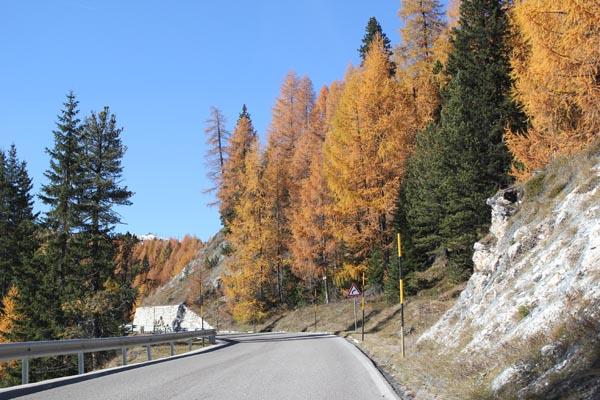 dles dolomites autumn bikelab3